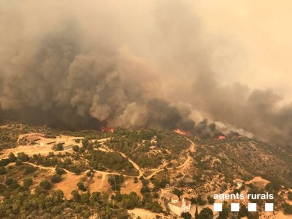 """Torra agradece el """"trabajo extraordinario"""" de los servicios de emergencias en el incendio"""