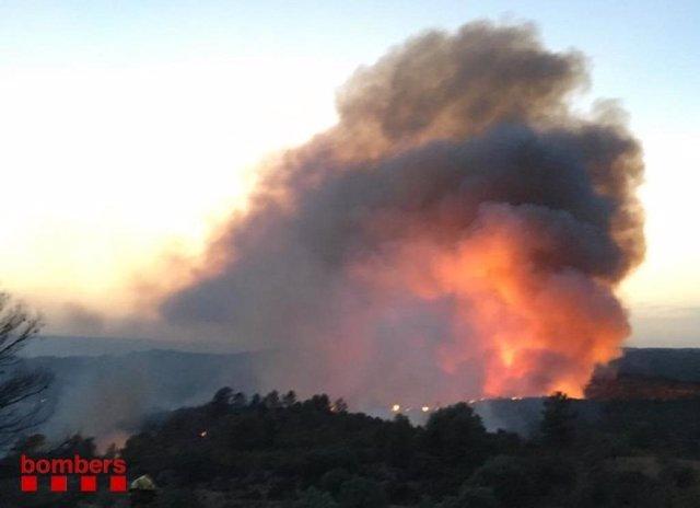 Incendio en Ribera d'Ebre (Tarragona)