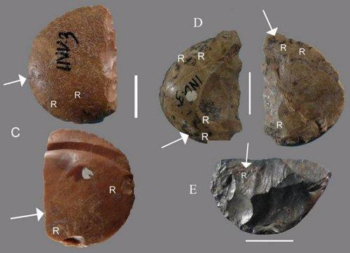 Trazas de resina en herramientas neandertales