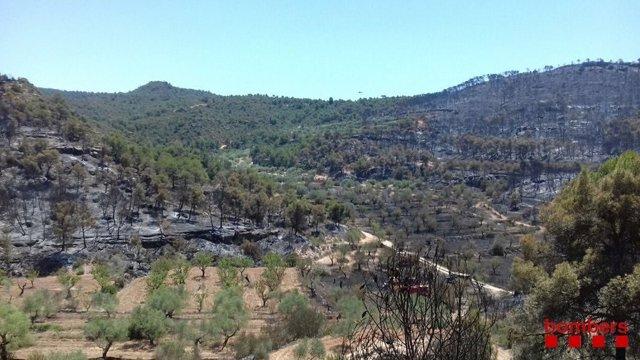 Incendi de la Ribera d'Ebre (Tarragona).