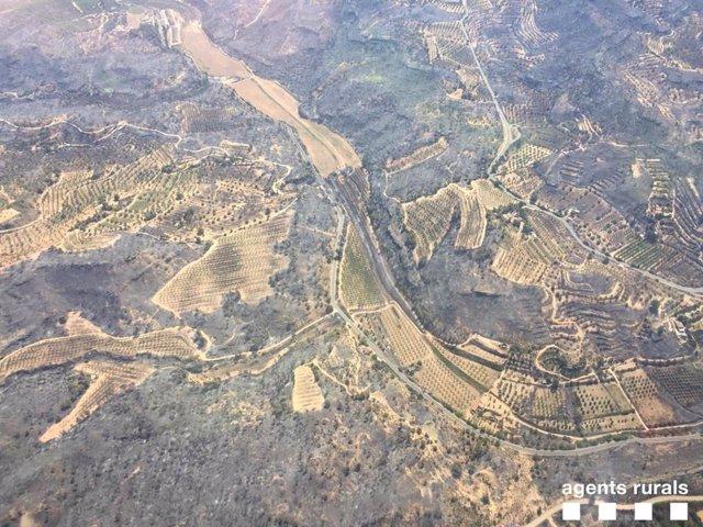 Imatges de la superfície afectada per l'incendi de la Ribera d'Ebre (Tarragona).