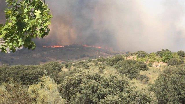 Incendio de Montesion y La Bastida