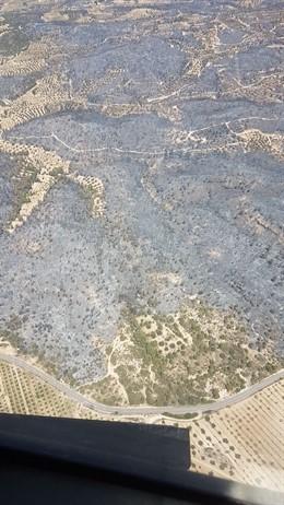 Incendi de la Ribera d'Ebre
