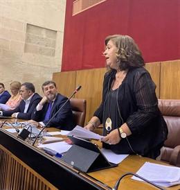 La parlamentaria del PP por Huelva Carmen Céspedes