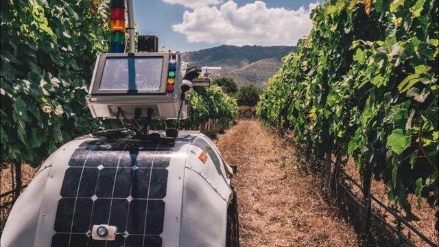 El Cetal organiza este lunes en Meis (Pontevedra) una jornada sobre nuevas tecnologías en viticultura.