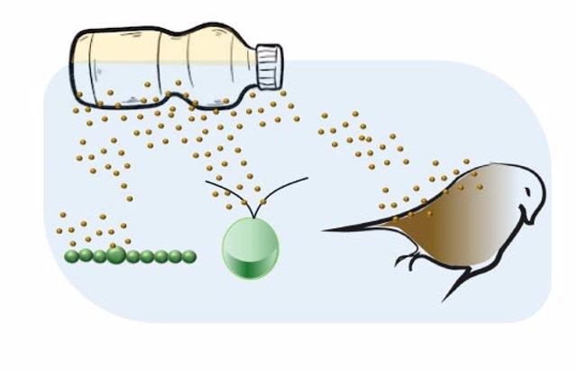 Los plásticos biodegradables también se degradan y afectan a la naturaleza
