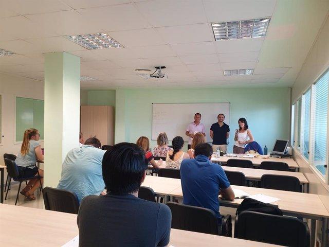 Cursos d'estiu per adults organitzats per l'Ajuntament de Palma