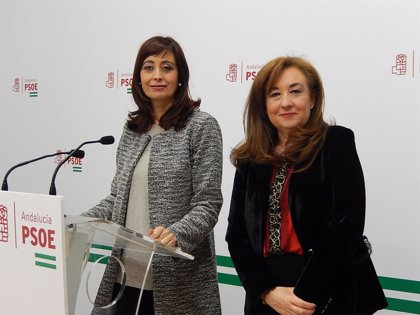 """El PSOE de Córdoba condena el """"asesinato machista"""" de una mujer en Rute (Córdoba)"""