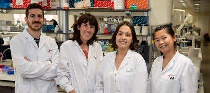 Confirmada la existencia de un nuevo subtipo de linfoma pediátrico