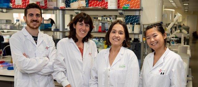 Confirman la existencia de un nuevo subtipo de linfoma pediátrico y aportan nuevos datos para mejorar el diagnóstico y tratamiento