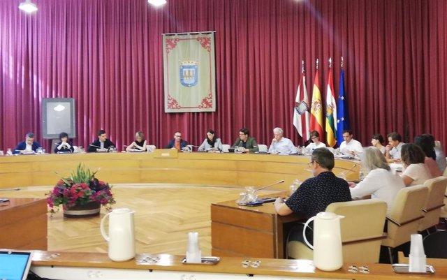 Imagen del pleno extraordinario celebrado por el Ayuntamiento de Logroño este viernes.