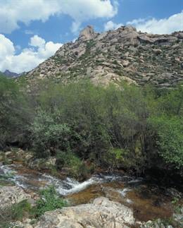 El río Manzanares a su paso por la Pedriza. Archivo.