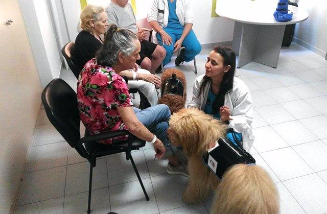 La terapia con perros en el Hospital Parc Taulí de Sabadell