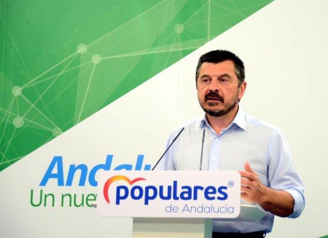 El vicesecretario general del PP-A, Toni Martín, en rueda de prensa