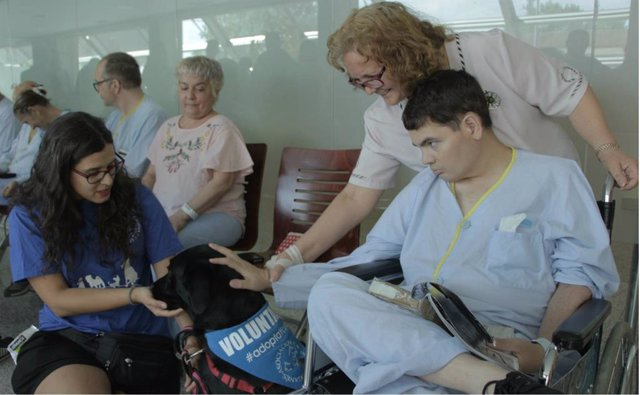Animales yu pacientes en el Hopsital Severo Ochoa