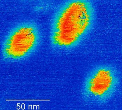 Observación de ferroelectricidad en Wte2