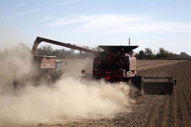 Imagen de la siembra de soja en un campo en Chacabuco, en la provincia argentina de Buenos Aires.