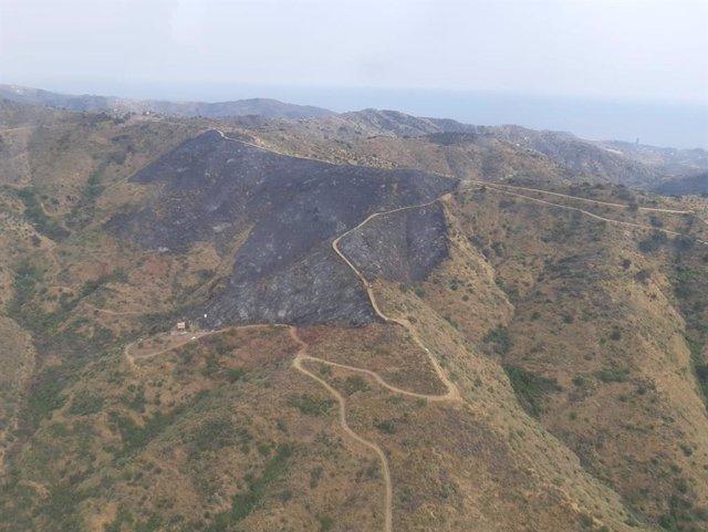 Imagen de la superficie afectada por el incendio forestal en el paraje Arroyo Jaboneros de Málaga capital