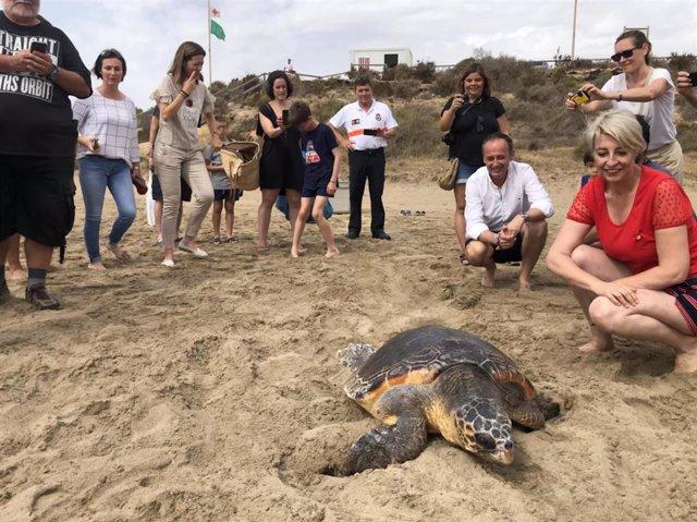 El consejero de Empleo, Universidades, Empresa y Medio Ambiente en funciones, Javier Celdrán, durante la liberación en Águilas de un ejemplar de tortuga boba tratada en el Centro de Recuperación de Fauna Silvestre de El Valle