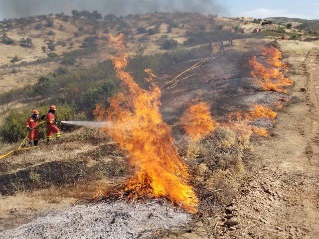 Efectivos de la Unidad Militar de Emergencias (UME) intervienen ante un incendio.