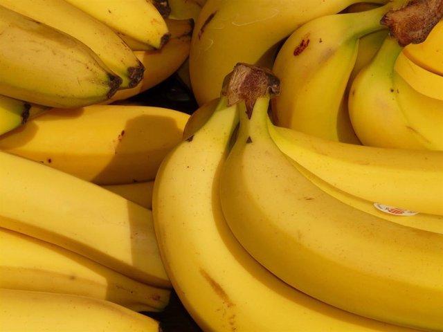 Plátanos, bananas