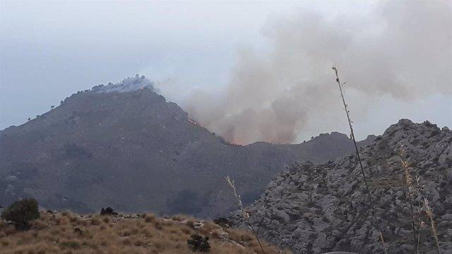 Incendio forestal a Escorca
