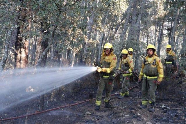 Queda extinguido oficialmente el incendio de Cadalso