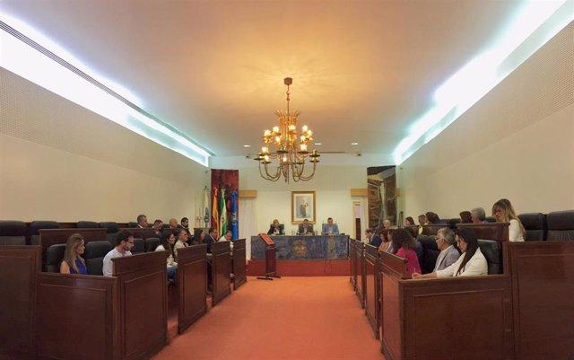 Pleno órganico de la Diputación de Huelva.