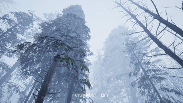 Imagen de la exposición interdimensional de arte portal 'On, Bosque Templado'