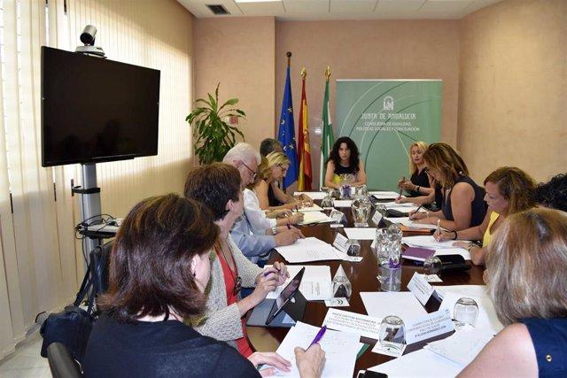 Imagen de la reunión de la consejera de Igualdad, Rocío Ruiz, con las universidades sobre el reparto de fondos del Pacto de Estado contra la violencia de género.