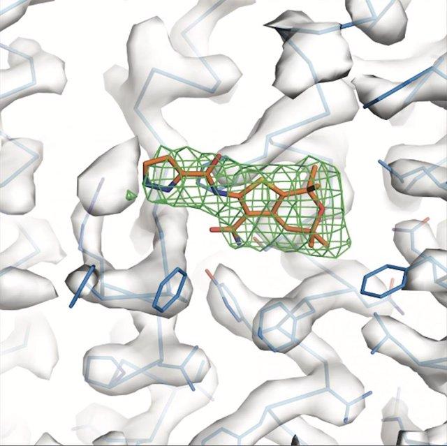 Un potenciador (naranja) se une a un 'hotspot' proteico, alterando la conformación de la molécula