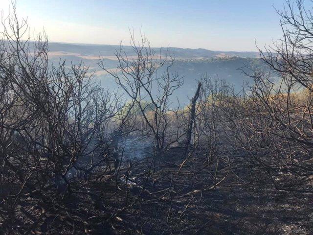 Superficie quemada en un incendio en un paraje de Vejer