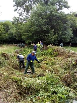 Limpieza de los cauces de varios arroyos en Renedo de Cabuérniga