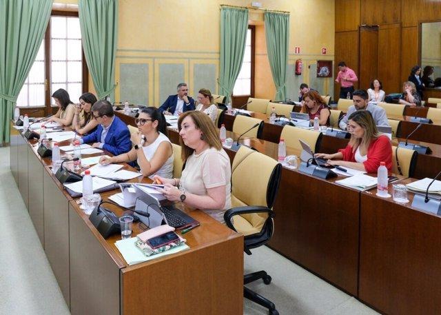Comisión de Igualdad, Políticas Sociales y Conciliación del Parlamento, en su reunión de este jueves.