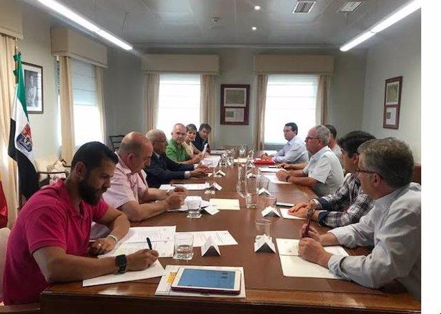 Reunión de la Comisión del Aepsa