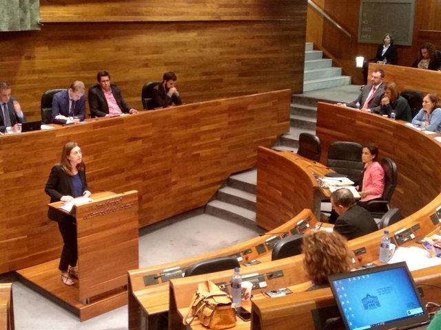 La portavoz de Podemos en la Junta General, Lorena Gil, durante el pleno de elección del Presidente.