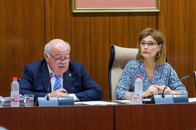 Mar Sánchez preside de la Comisión de Salud del Parlamento