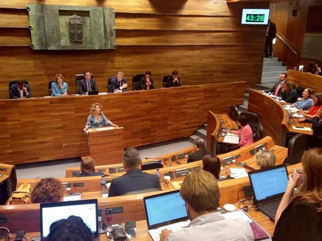 La portavoz del PP en la Junta General, Teresa Mallada, durante el pleno de Elección del Presidente.