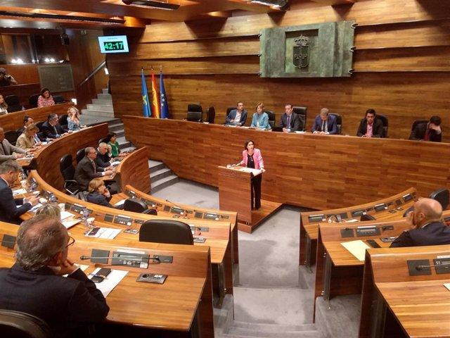 La portavoz del PSOE, Dolores Carcedo, en la Junta General.