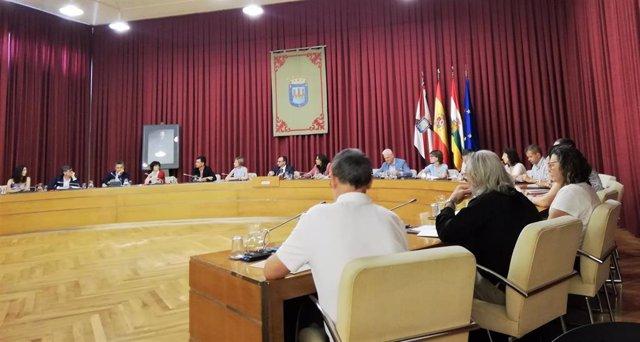 Imagen del desarrollo del pleno extraordinario del Ayuntamiento de Logroño de este 12 de  julio