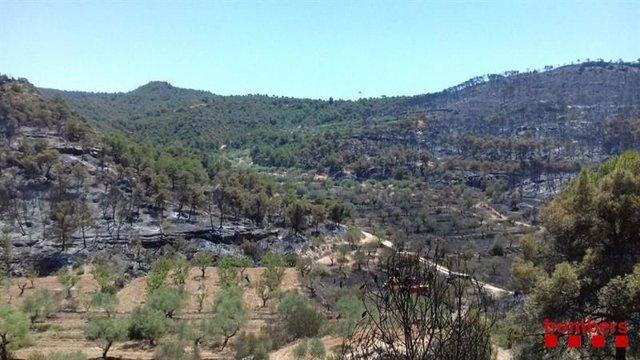 Incendi de la Ribera dEbre Tarragona.