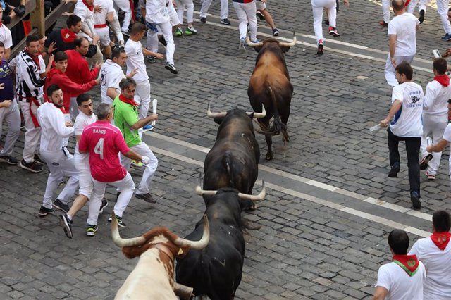 Séptimo encierro de los Sanfermines de 2019, con toros de La Palmosilla.