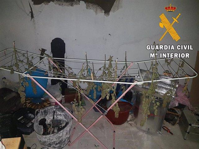 Detenido un vecino de Huércal por un presunto delito contra la salud pública