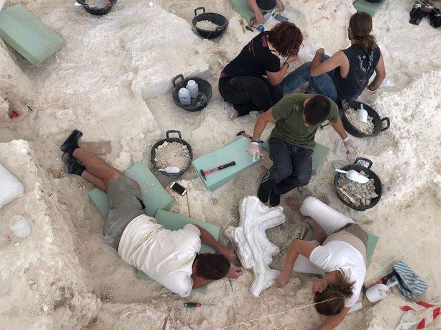 Expertos en la anterior campaña de excavaciones en Orce