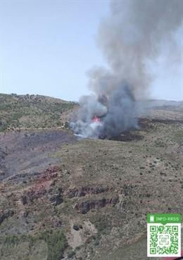 Incendio en el paraje La Zarda