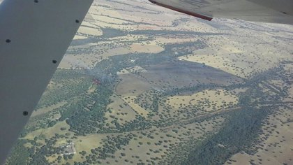 16 medios, tres de ellos aéreos, participan en las labores de extinción de un fuego en Retuerta del Bullaque