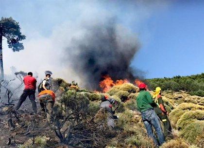 Medios aéreos y terrestres trabajan en un fuego en Sotillo de la Adrada (Ávila) en nivel 1