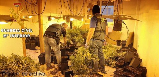 Almería.- Sucesos.- Detenidas tres personas en Berja por cultivar marihuana en s