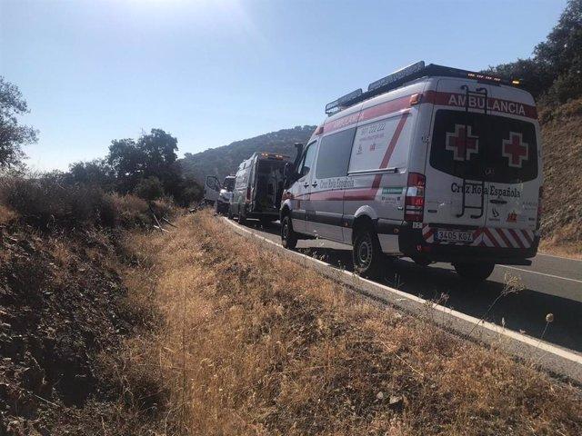 Ambulancias asisten a los heridos en un accidente en Monesterio