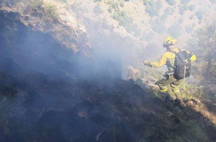 La Junta espera que el incendio de Sotillo de la Adrada (Ávila) quede controlado a lo largo del domingo